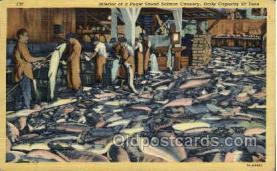 ocp001040 - Puget Sound Salmon Cannery, Occupational Postcard Postcards