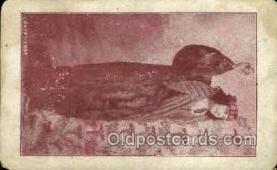 opr001052 - L'Egyptienne Opera Postcard Postcards