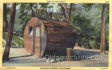 out001153 - Outhouse Outhouses Postcard Postcards