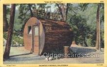 out001166 - Outhouse Outhouses Postcard Postcards