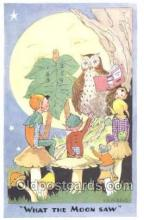 owl001011 - Artist L.R. Steele Artist L.R. Steele, Owl Postcard Postcard
