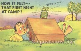owl001024 - Owl Postcard Postcard