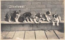 p_003 - Post Card Old Vintage Antique