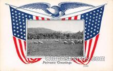 pat100082 - Patriotic Greetings  Postcard Post Card