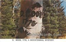 pat100519 - D Boon 1776 Bicentennial Mystery Patriotic Postcard Post Card