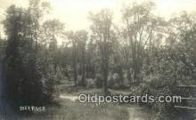 pht001193 - Deer River UnKnown Real Photo Postcard Postcards