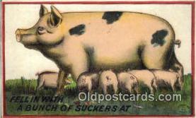 pig001024 - Pig, Pigs, Postcard Postcards