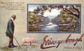 pig001038 - Pig, Pigs, Postcard Postcards