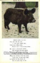 pig001047 - Pig, Pigs, Postcard Postcards