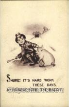 pig001048 - Artist Cobb Shinn, Pig, Pigs, Postcard Postcards
