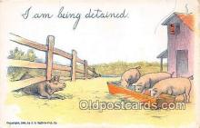 pig001054 - Postcards Post Cards Old Vintage Antique