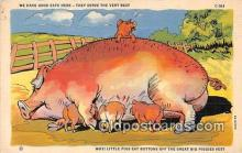 pig001059 - Postcards Post Cards Old Vintage Antique