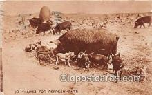 pig001060 - Postcards Post Cards Old Vintage Antique