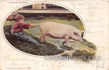 pig001079 - Little on the Hog  Postcards Post Cards Old Vintage Antique