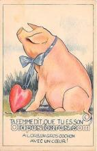 pig001117 - Porte Bonheur  Postcards Post Cards Old Vintage Antique