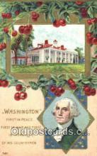 pol001014 - George Washington 1st USA President Postcard Postcards