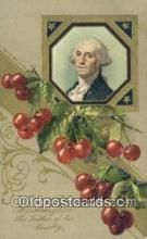 pol001175 - George Washington, 1st President USA, Political, Old Vintage Antique Postcard Post Card
