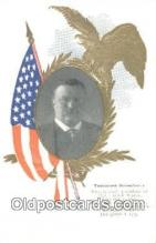 pol100020 - Theodore Roosevelt USA Political Postcard Postcards