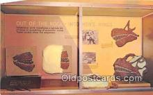 pre000005 - Out Of the Rock Into Men's Minds Dinosaur National Monument, Utah, USA Postcards Post Cards Old Vintage Antique