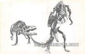 Dinosaur Group, Antrodemus, Allosaurus