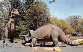 pre000013 - Museum of Science & Natural History, Oak Knoll Park St Louis, Missouri, USA Postcards Post Cards Old Vintage Antique