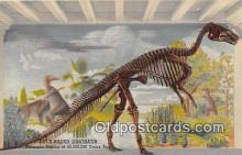 pre000031 - Duck Billed Dinosaur Colorado Museum of Natural History, USA Postcards Post Cards Old Vintage Antique