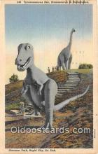 pre000036 - Tyrannosaurus Rex Rapid City, South Dakota, USA Postcards Post Cards Old Vintage Antique