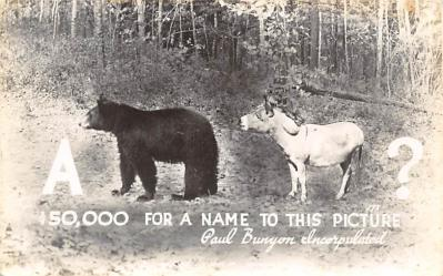 Bear & Donkey