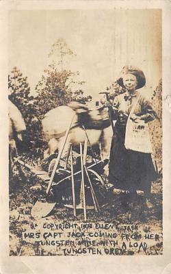 Mrs. Capt. Jack, Mining