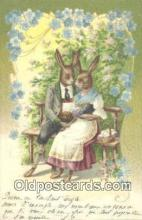 rbt005 - Dressed Rabbit Postcard Postcards