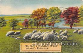 rgn100204 - Religion Postcard