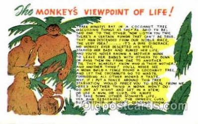 monkey Viewpoint