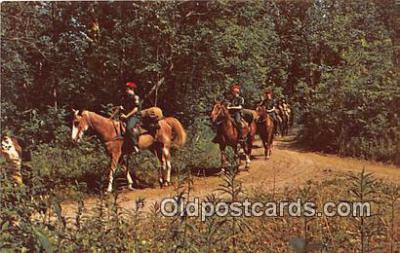 sct100114 - Postcards Post Cards Old Vintage Antique