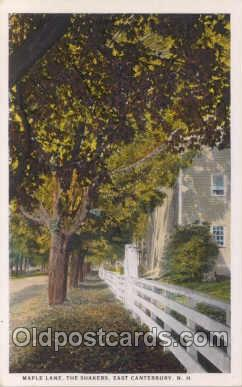sha001006 - Maple Lane, The Shakers, East Canterbury, NH Postcard Postcards