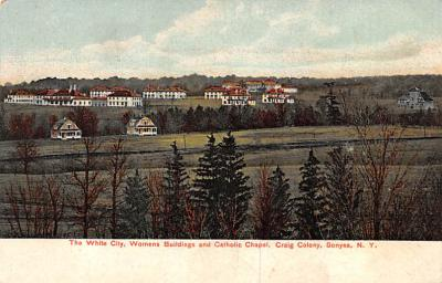 sha700225 - Shaker Postcards Old Vintage Antique Post Cards