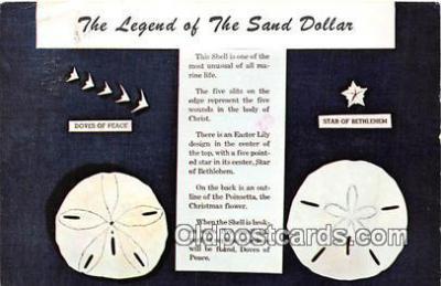 she001007 - Legend of the Sand Dollar Mellita Testudinata, Holy Goast Shell Postcards Post Cards Old Vintage Antique