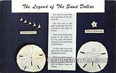 she001008 - Legend of the Sand Dollar Mellita Testudinata, Holy Goast Shell Postcards Post Cards Old Vintage Antique