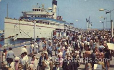 shi007244 - Avalon, Catalina Island Ocean Liner, Ocean Liners, Oceanliner Ship Ships Postcard Postcards
