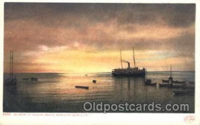 shi008953 - Santa Catalina island, California,USA Steamer Ship Ships Postcard Postcards