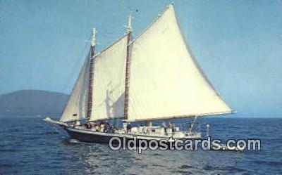 shi020404 - Schooner Mercantile, Camden, Maine, ME USA Sail Boat Postcard Post Card