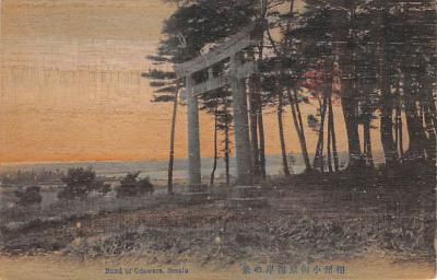 shw100053 - Showcase Postcard