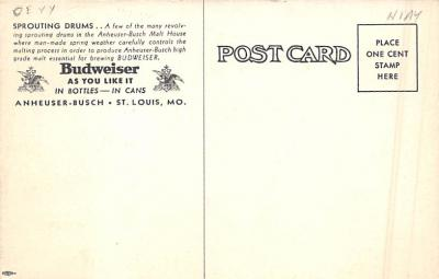 sub015423 - Sprouting Drums Budweiser Anheuser Busch, St. Louis MO USA Postcard  back