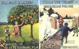 saw001007 - St. Petersburg, Florida, USA Summer Winter Postcard Postcards