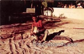 sem000032 - Seminole Indians Postcard