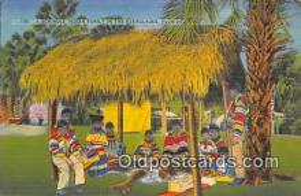 sem000075 - Seminole Indians Postcard