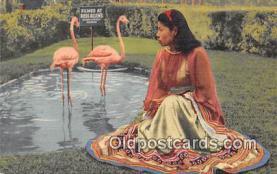 sem000098 - Seminole Indians Postcard
