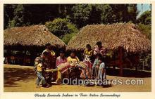 sem000154 - Seminole Indians Post card