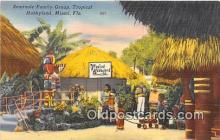 sem000180 - Seminole Indians Post card