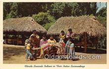 sem000190 - Seminole Indians Post card