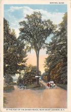 sha500226 - Old Vintage Shaker Post Card